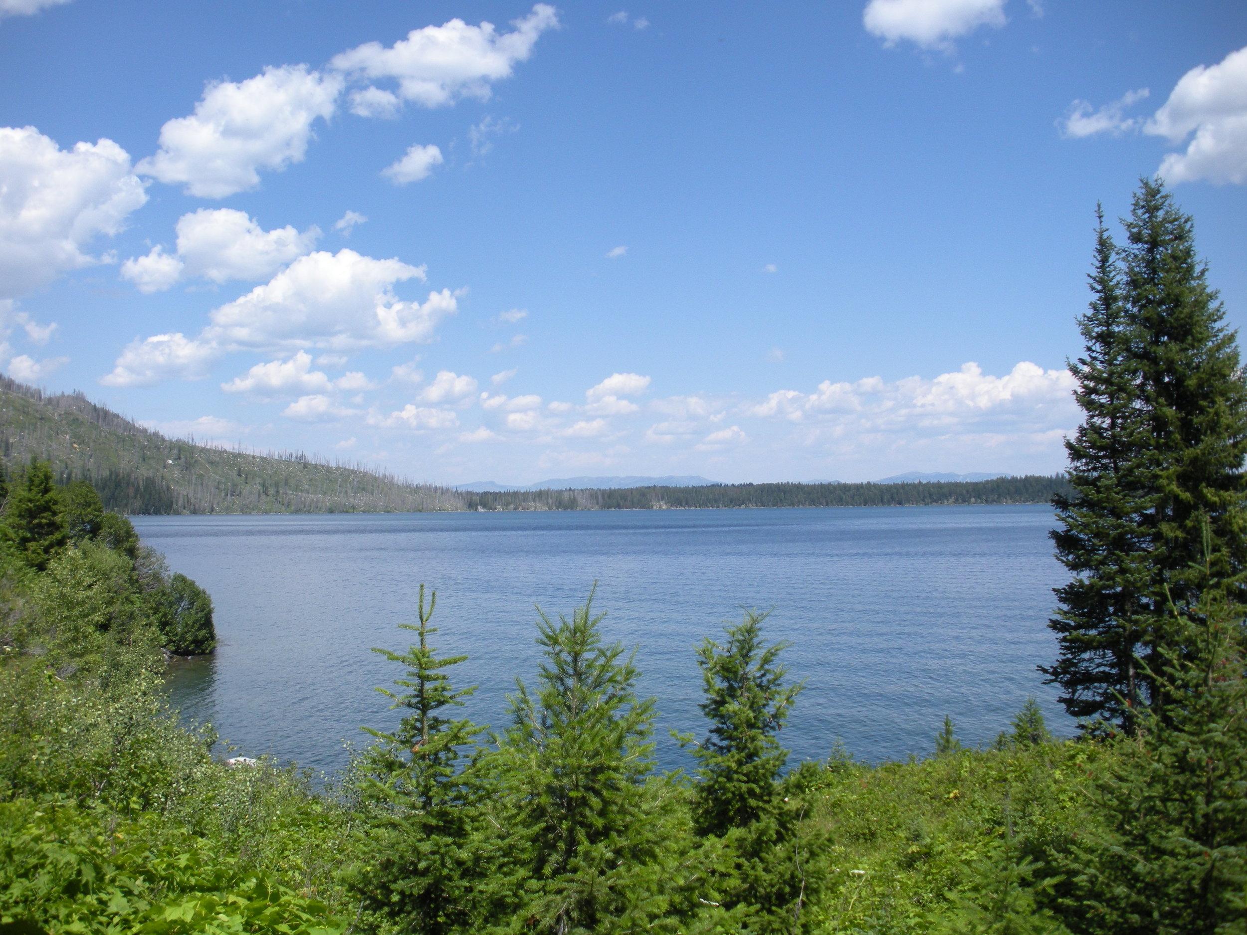 lake jenny 2.jpg