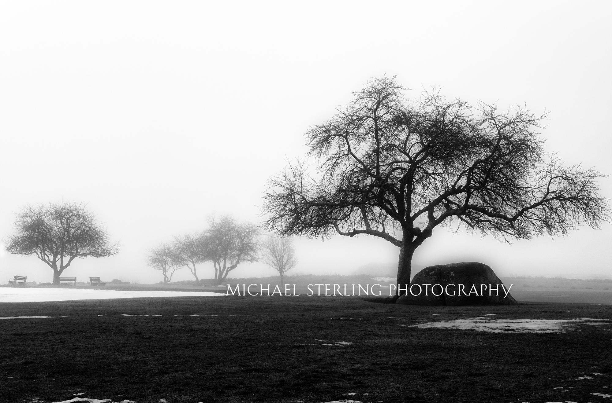 Fog in New Castle