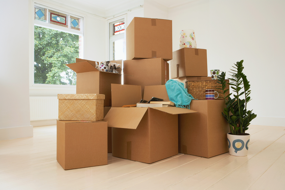 Moving - Moving or Downsizing? We can plan, declutter, box, stage, and more.