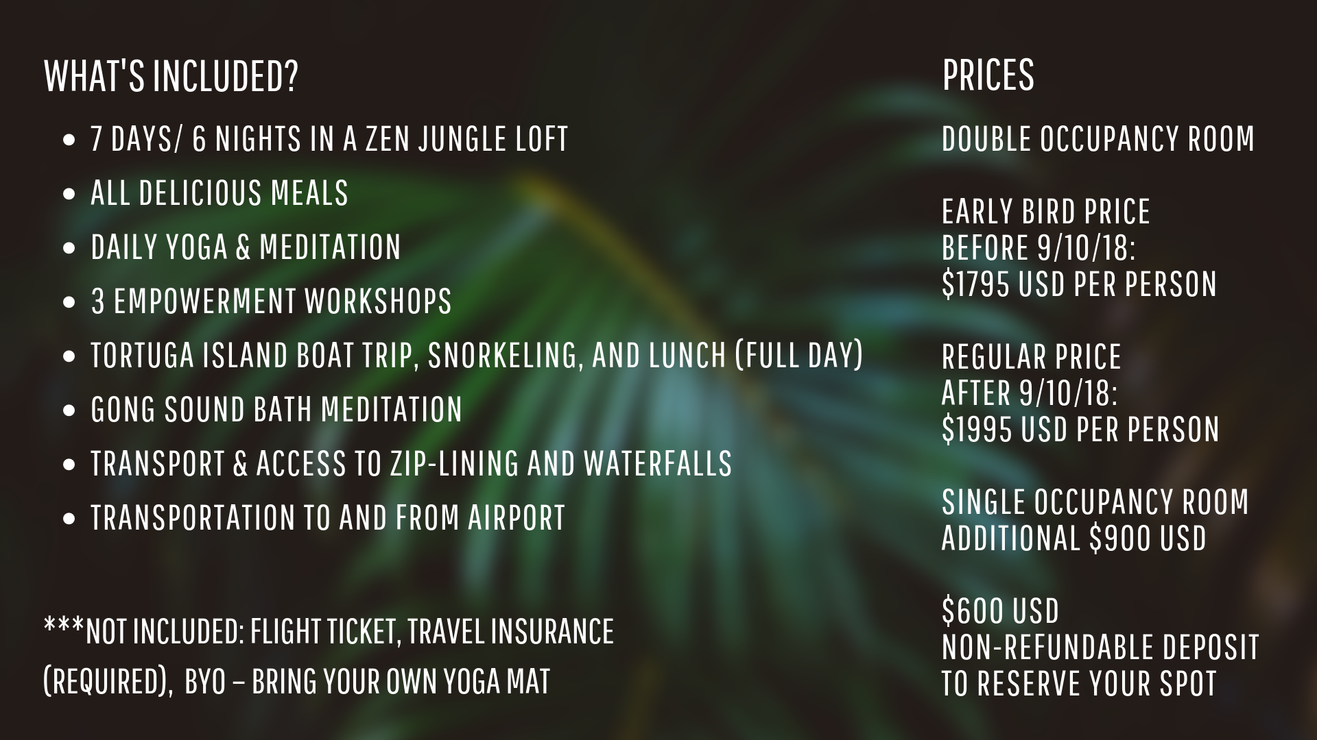 7 days%2F 6 nights in a zen Jungle LoftAll delicious meals (except 2-3 that will be eaten on the road)Daily Yoga & Meditation3 Empowerment workshopsTortuga Island Boat Trip, Snorkeling, and Lunch (full day)Gong Sound B (7).png