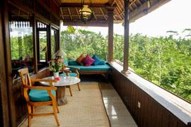 Bali view.jpg