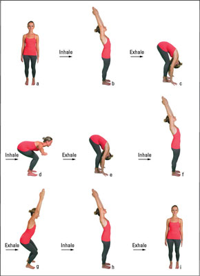 http://www.dummies.com/health/exercise/yoga/how-to-rejuvenate-with-a-9-step-yoga-sun-salutation/