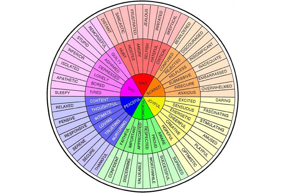 emotion wheel.jpg