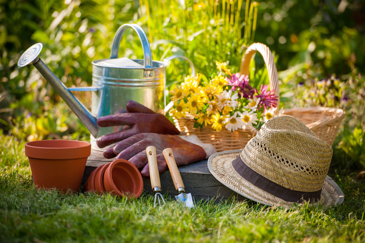What-is-4x4-Gardening.jpg