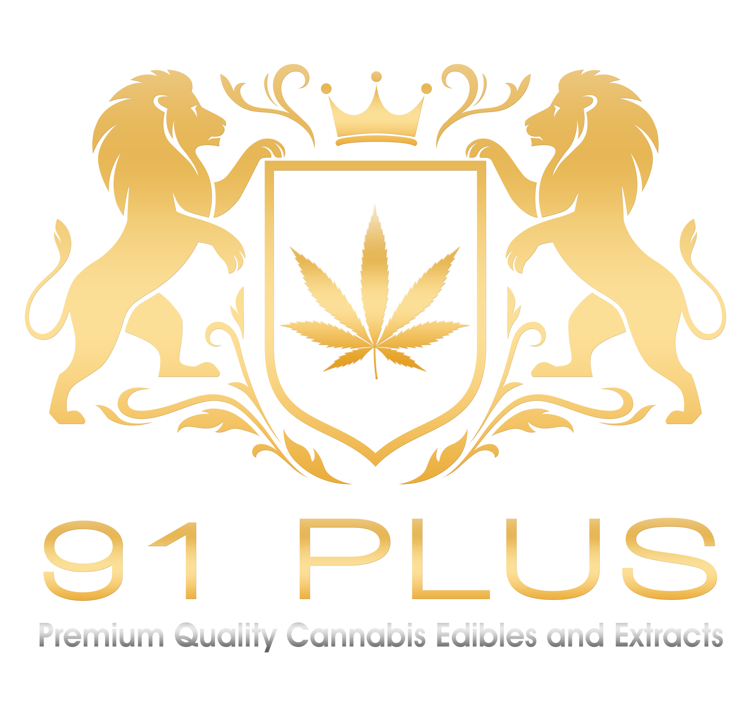 91PLUS-LOGO-NEW.png
