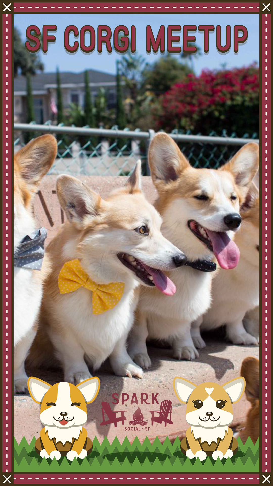 SF Corgi Meetup Sample (1).jpg