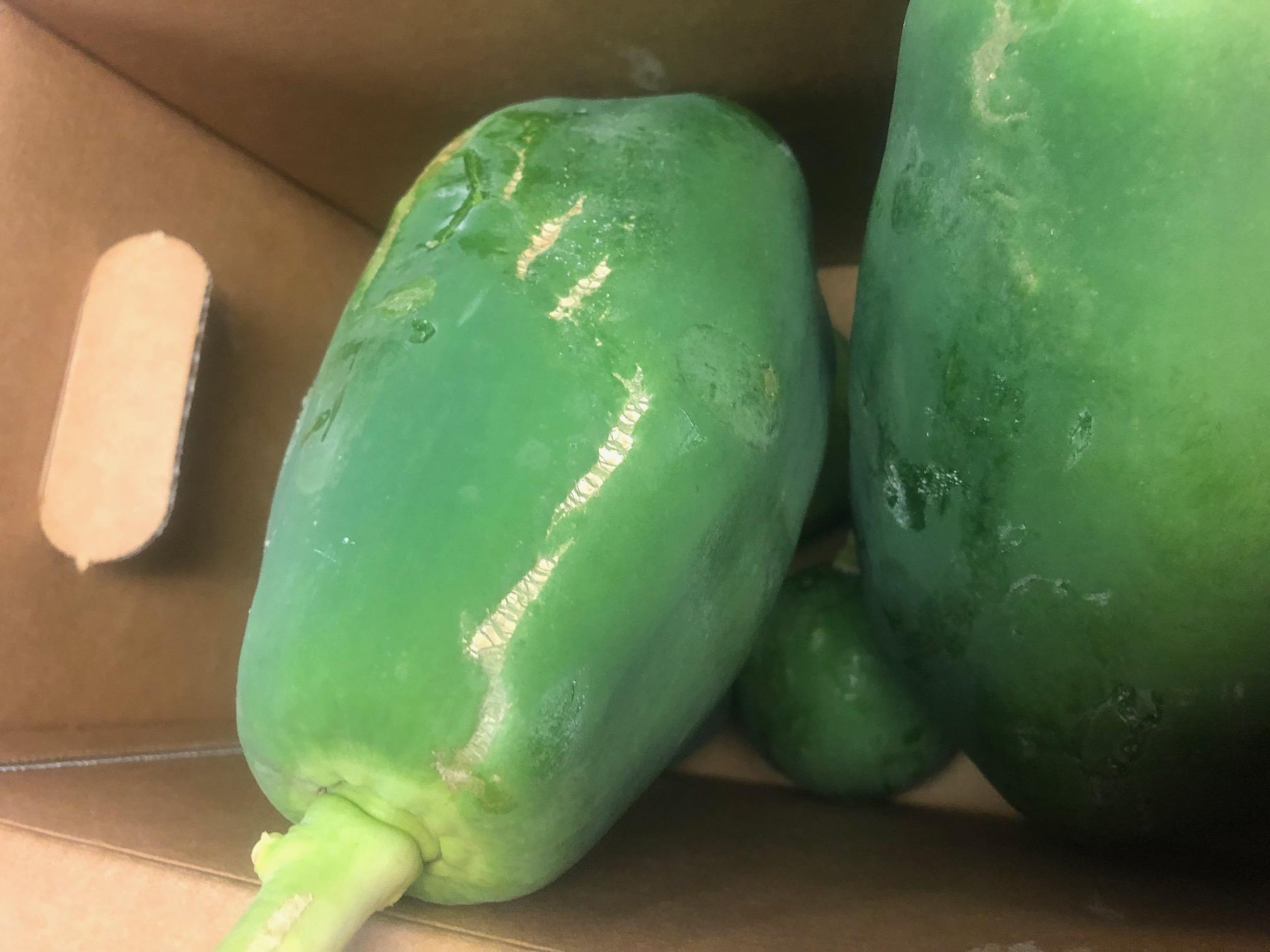 Local Green Papaya