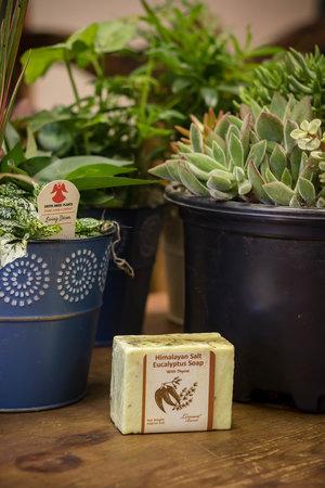 Himalayan Salt Eucalyptus Soap with Thyme