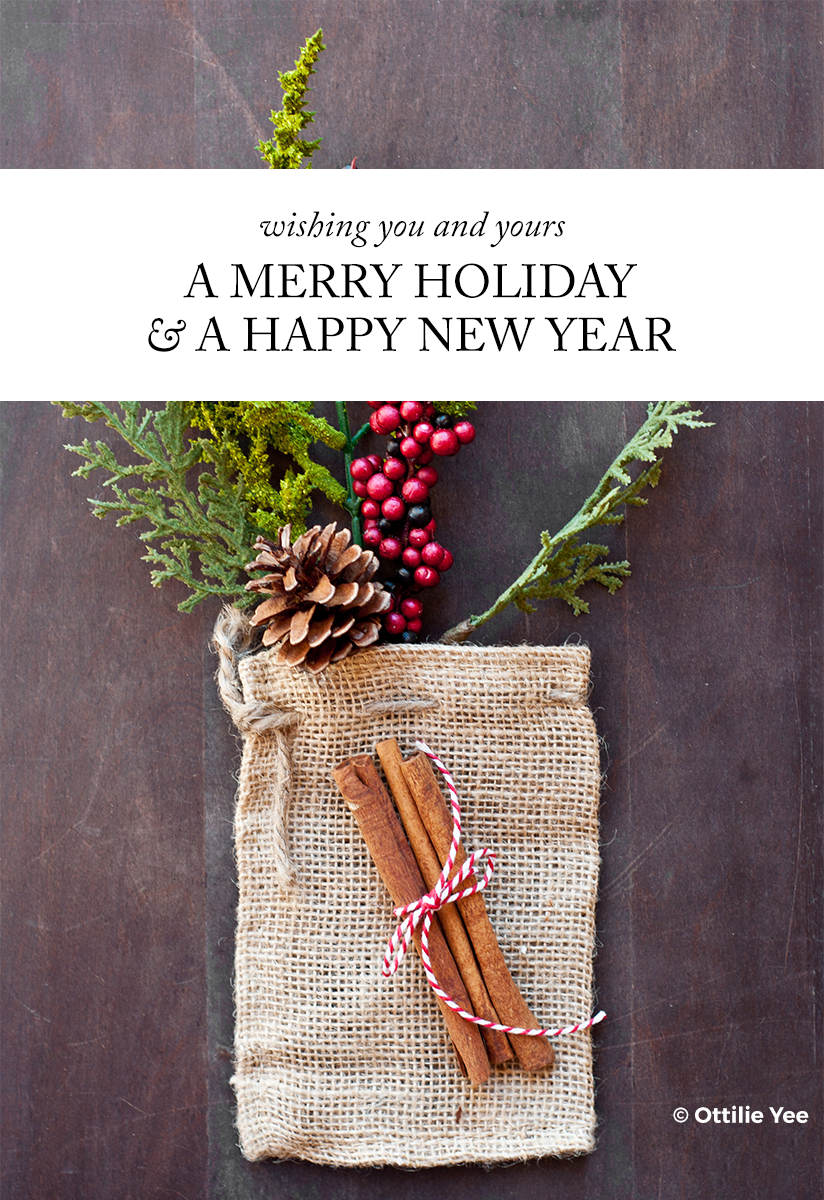 Dec-25-2015-Merry-Holday-+-Happy-New-Year.png