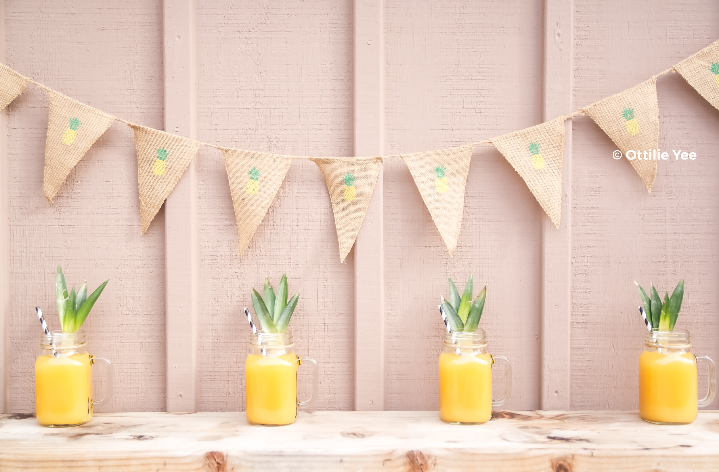 bunting_pineapples_1.png