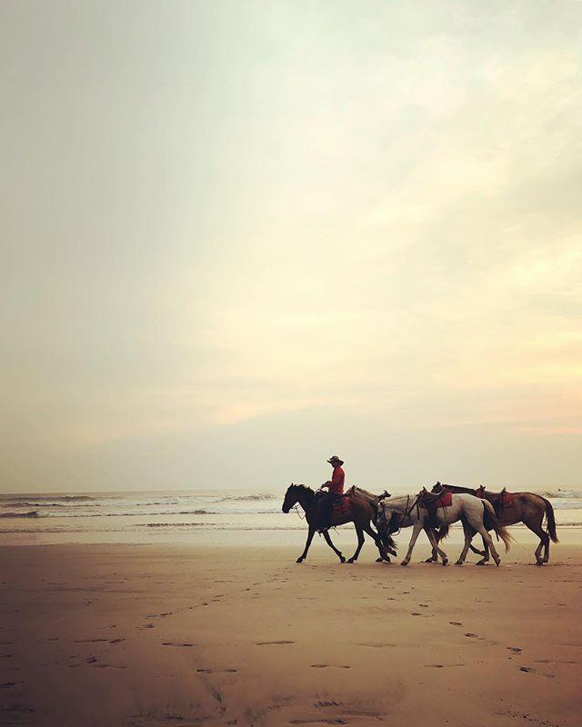 Costa Rica!!🇨🇷🦋💛🏄🏼♀️🌴👙 #puravida  #costarica #surftrip  #sunset  #grateful #beachlife #eastersunday