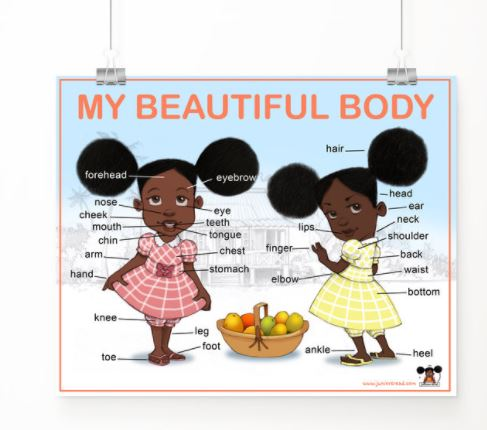 The body poster from Juniors Read company.