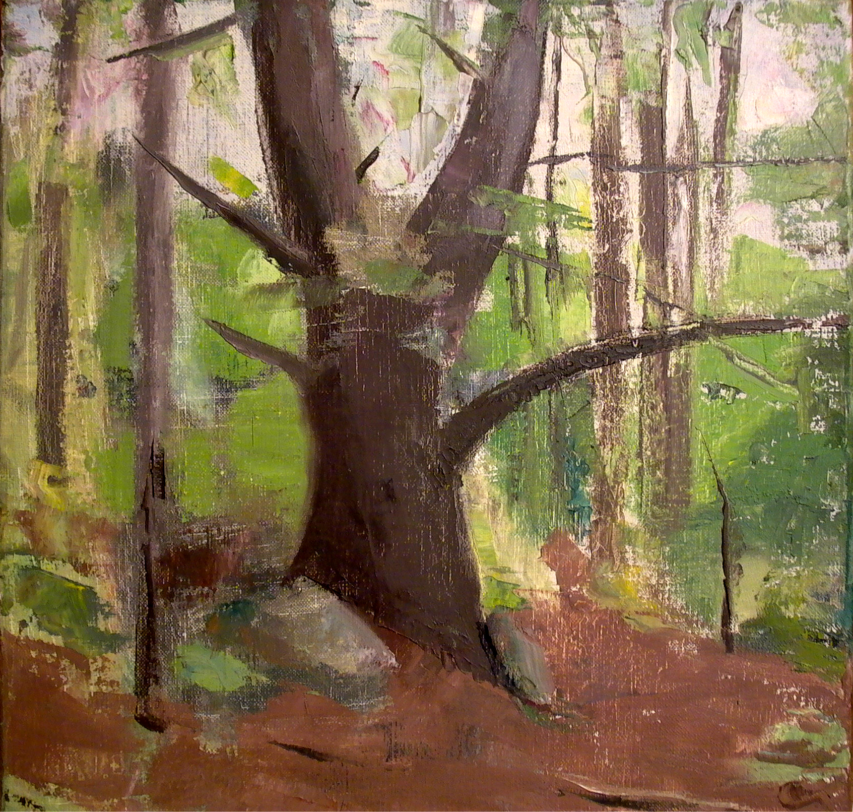 "Pine Tree Trunk, 14"" x 14"", oil on linen"