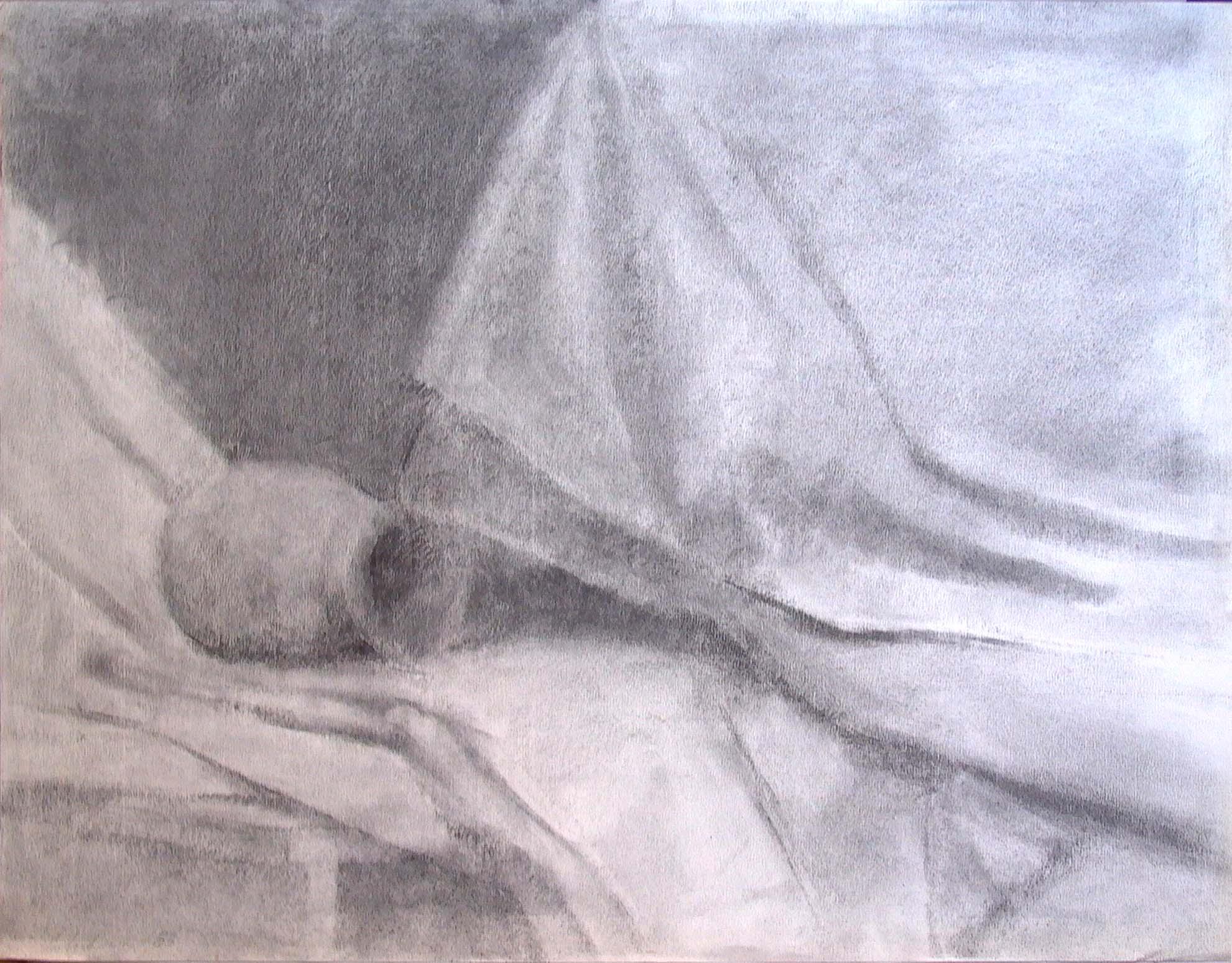 """Still Life, 18"""" x 24"""", charcoal"""