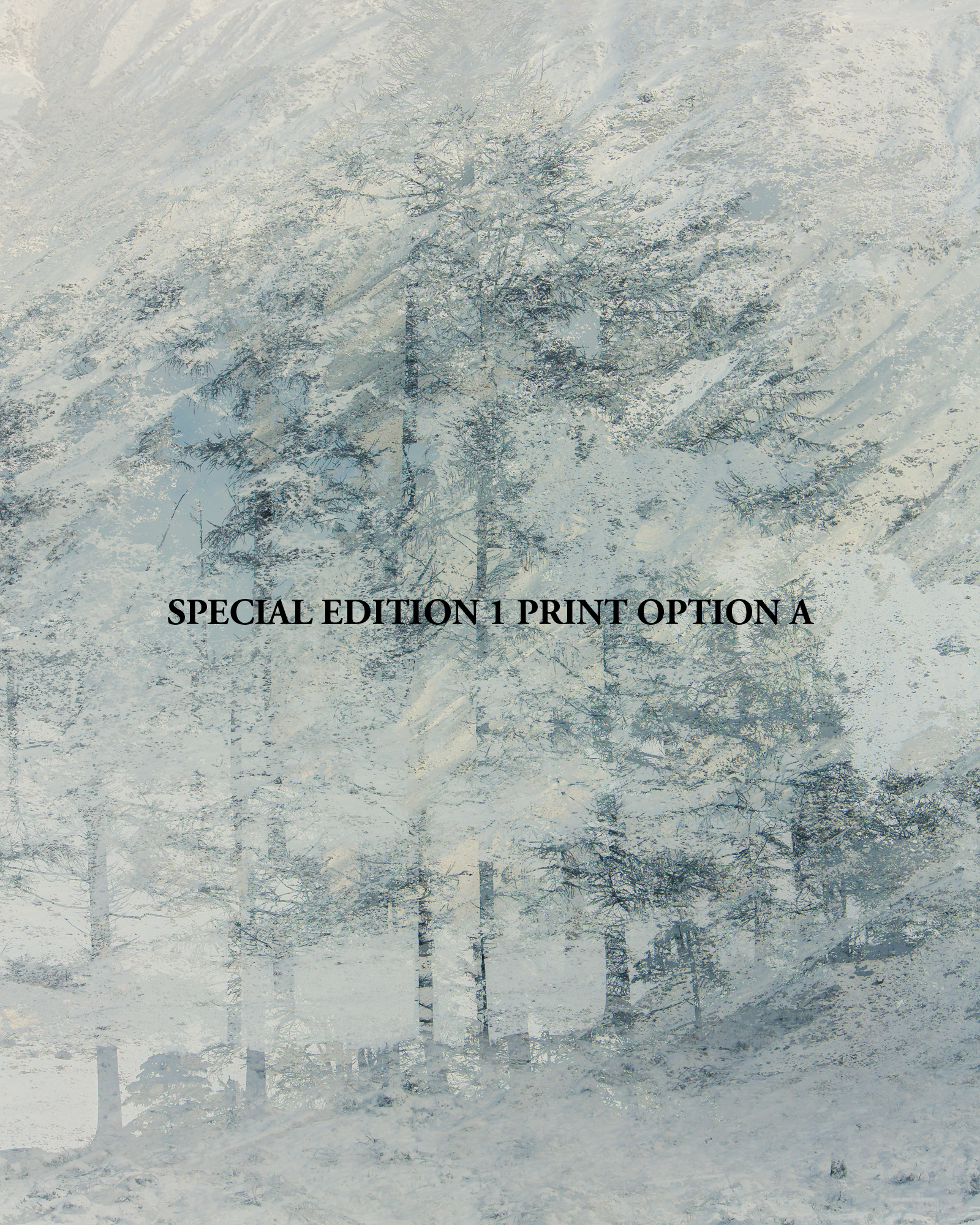 SPECIAL EDITION 1 PRINT A