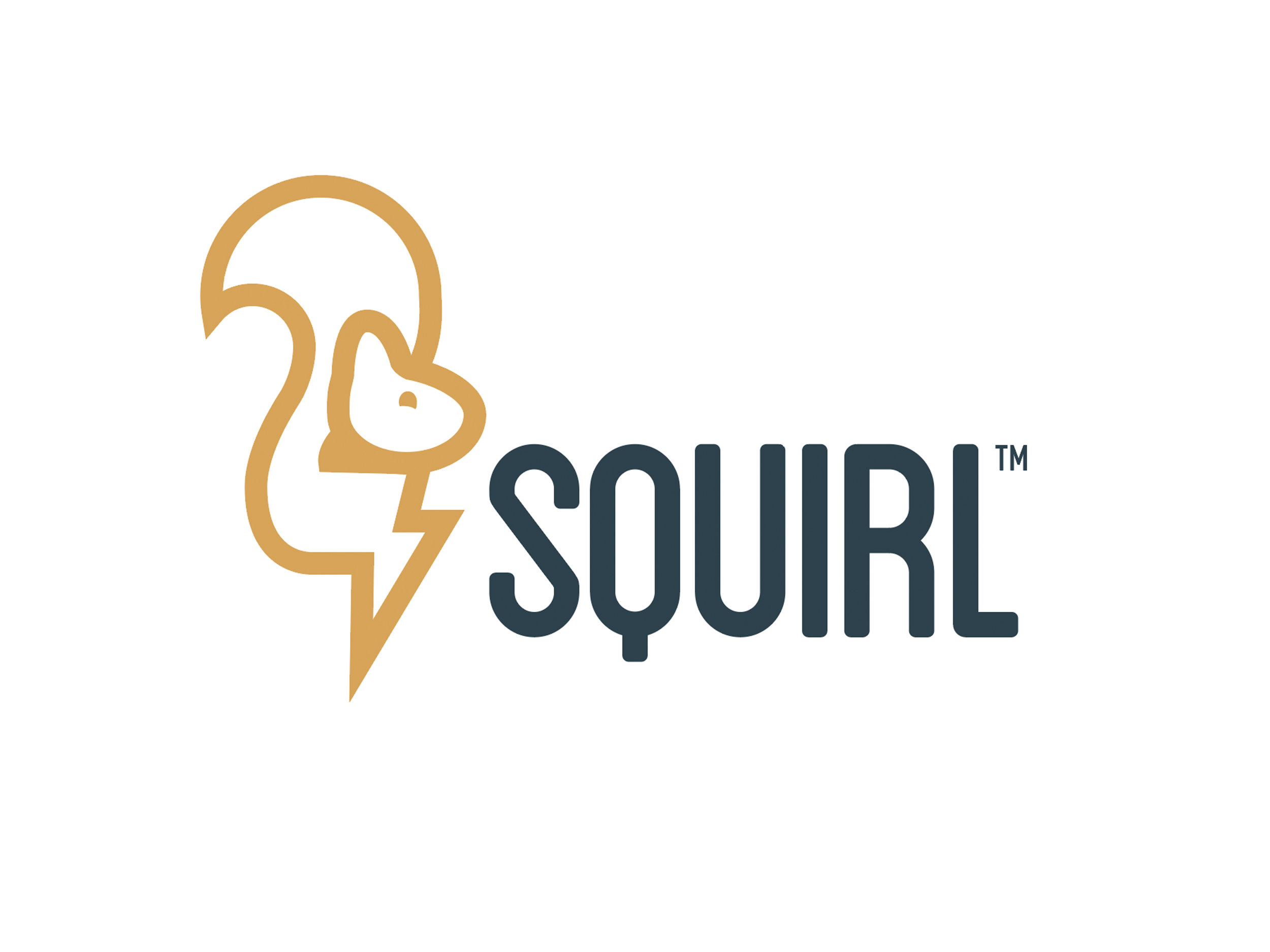 CLICK HERE TO SEE MORE ASSETS THAT WHOVILLE CREATED FOR SQUIRL