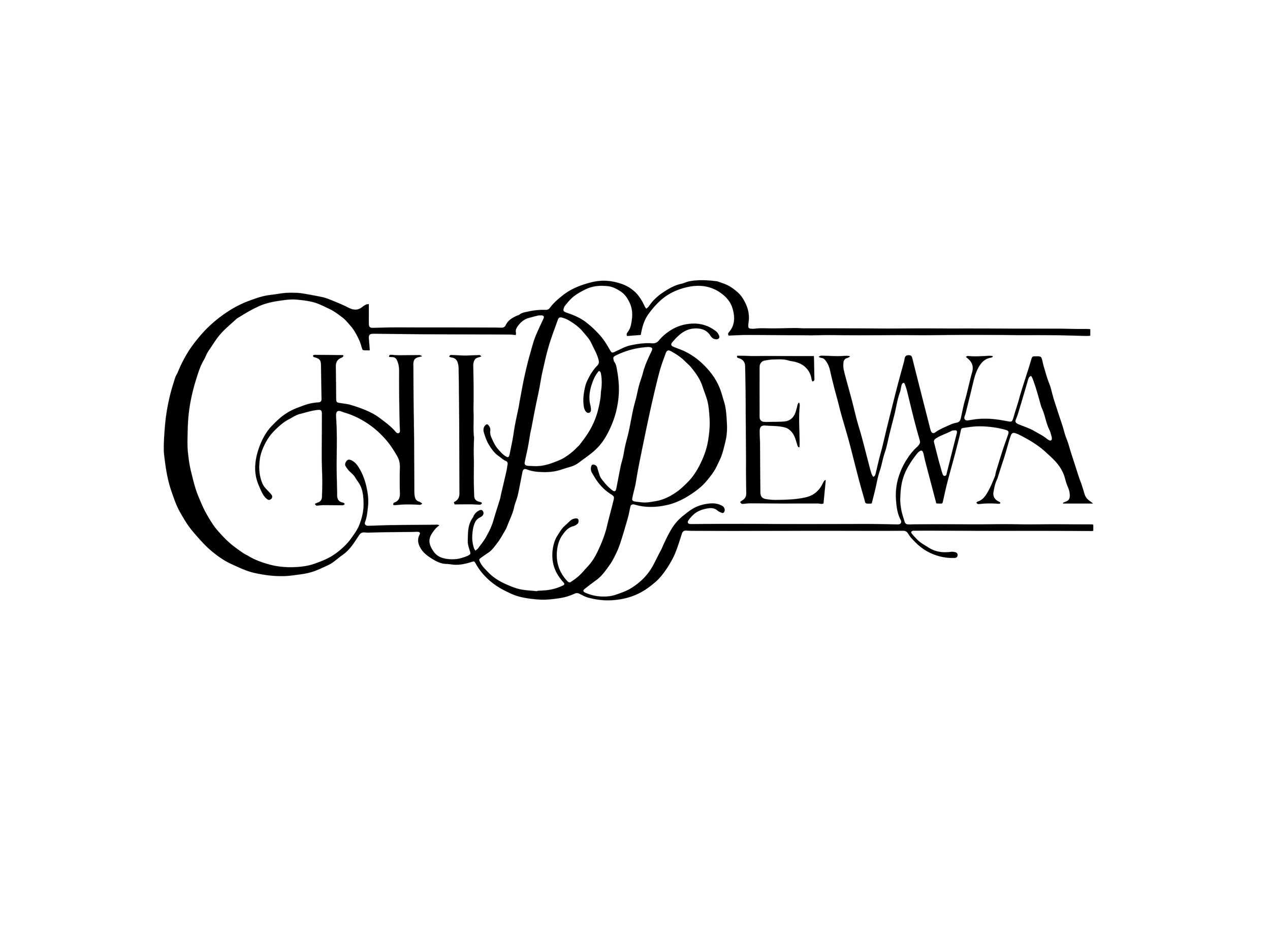 CLICK HERE TO SEE OTHER ASSETS THAT WHOVILLE HAS CREATED FOR CHIPPEWA SPRING WATER