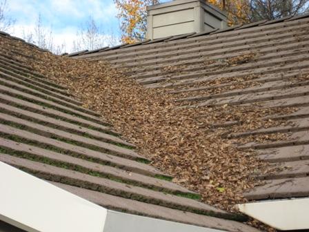 roof valley debris.jpg