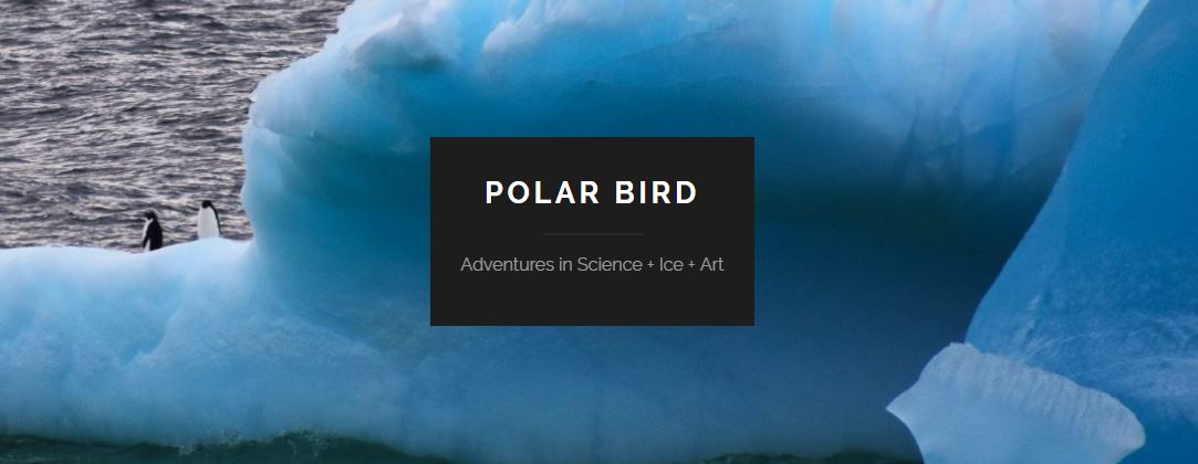 POLAR BIRD—Adventures in Science + Ice + Art - Marlo's sci-comm blog about polar ice, sci-art, and science adventures.