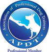 APDT_Prof_COLOR-e1408637066195.png