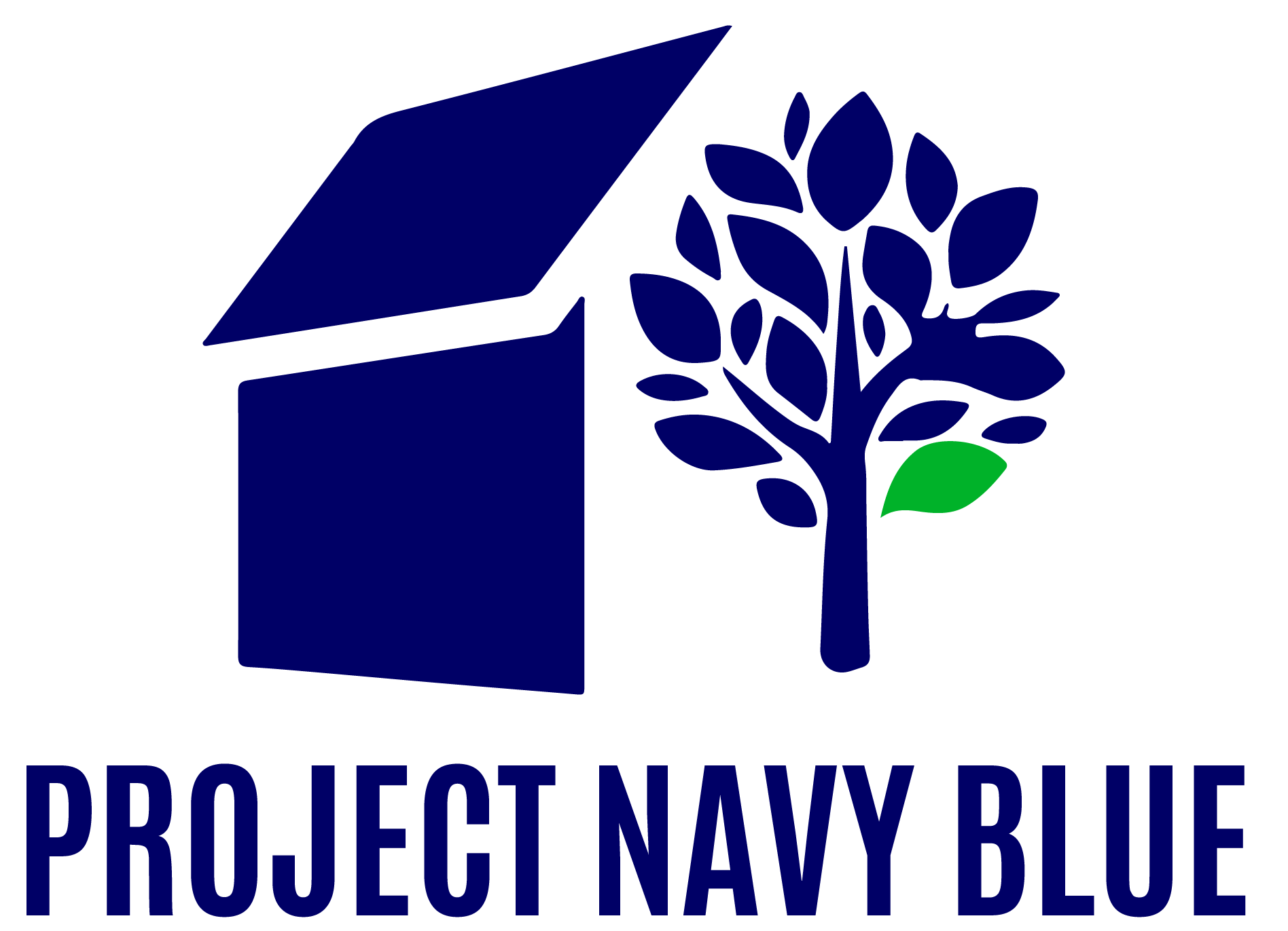 Project Navy Blue