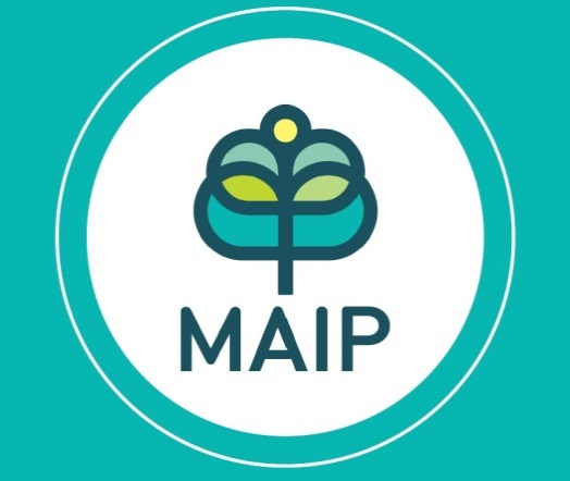 MAip Fellow 2019 -