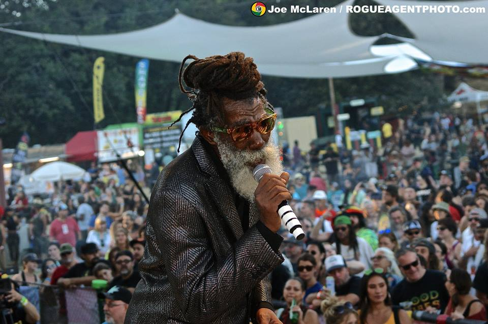 Reggae on the River.jpg