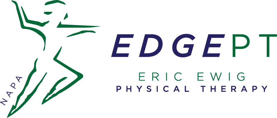 Edge Vector Logo.png