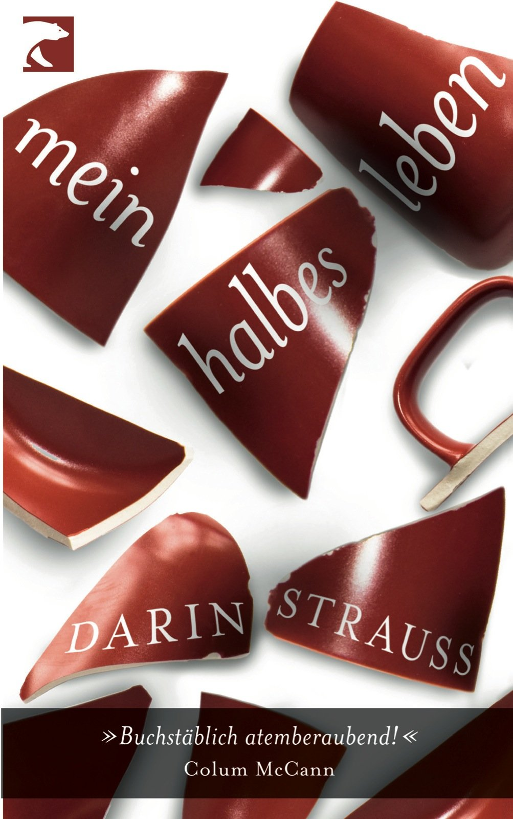 DarinStrauss_Cover.jpg