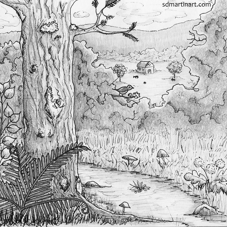 Pen and Pencil Nature Drawing_Color Scan Edited_LR with WM.jpg