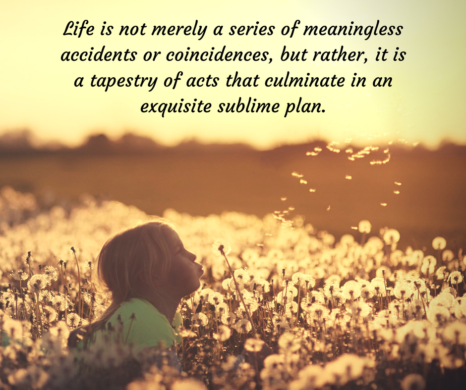 Life is not merely a series of meaningless accidents or coincidences, but rather, it is a tapestry of acts that culminate in an exquisite, sublime plan..png