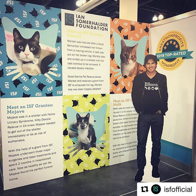 My work was recently at @catconworldwide at the @isfofficial booth. I've been volunteering my skills for ISF for over 6 years and love every minute of it! I'm thankful to be able to work with organizations that make steps each day to better our world ❤️ #nonprofit #nonprofitdesigner #graphicdesigner #tradeshowdesigner #imadesigner #stepandrepeat #isf @iansomerhaulder #isfoundation