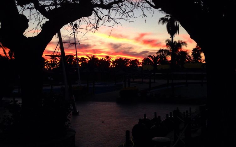 Cambrills Cycling Sunset.jpg