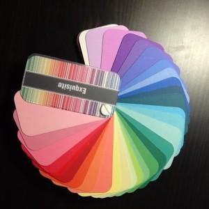 Equisite colour swatch
