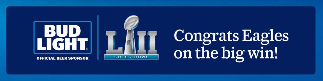 Eagles Superbowl (002).jpg