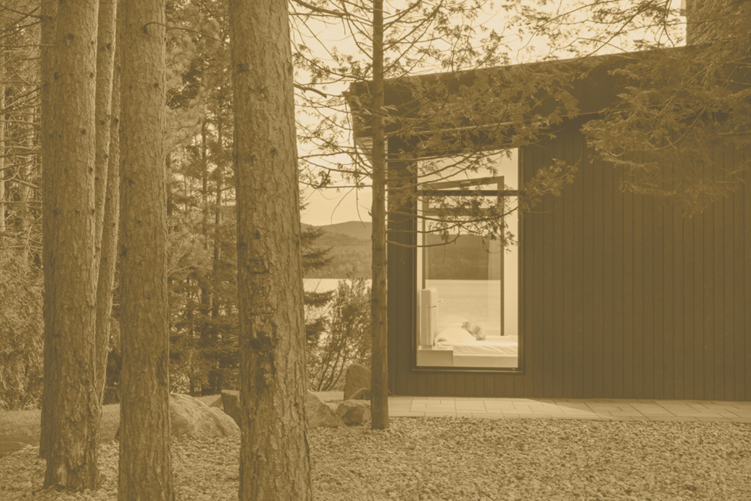 Let Nature In - Minimal, Eco-Friendly Design