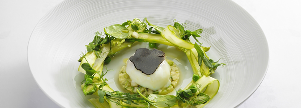 Asparagus from « Malemort », organic soft-boiled egg,coriander French dressing