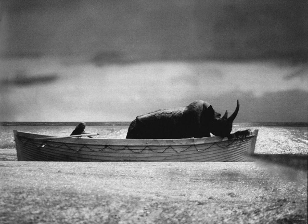 'E la nave va' by Fellini 2.jpg
