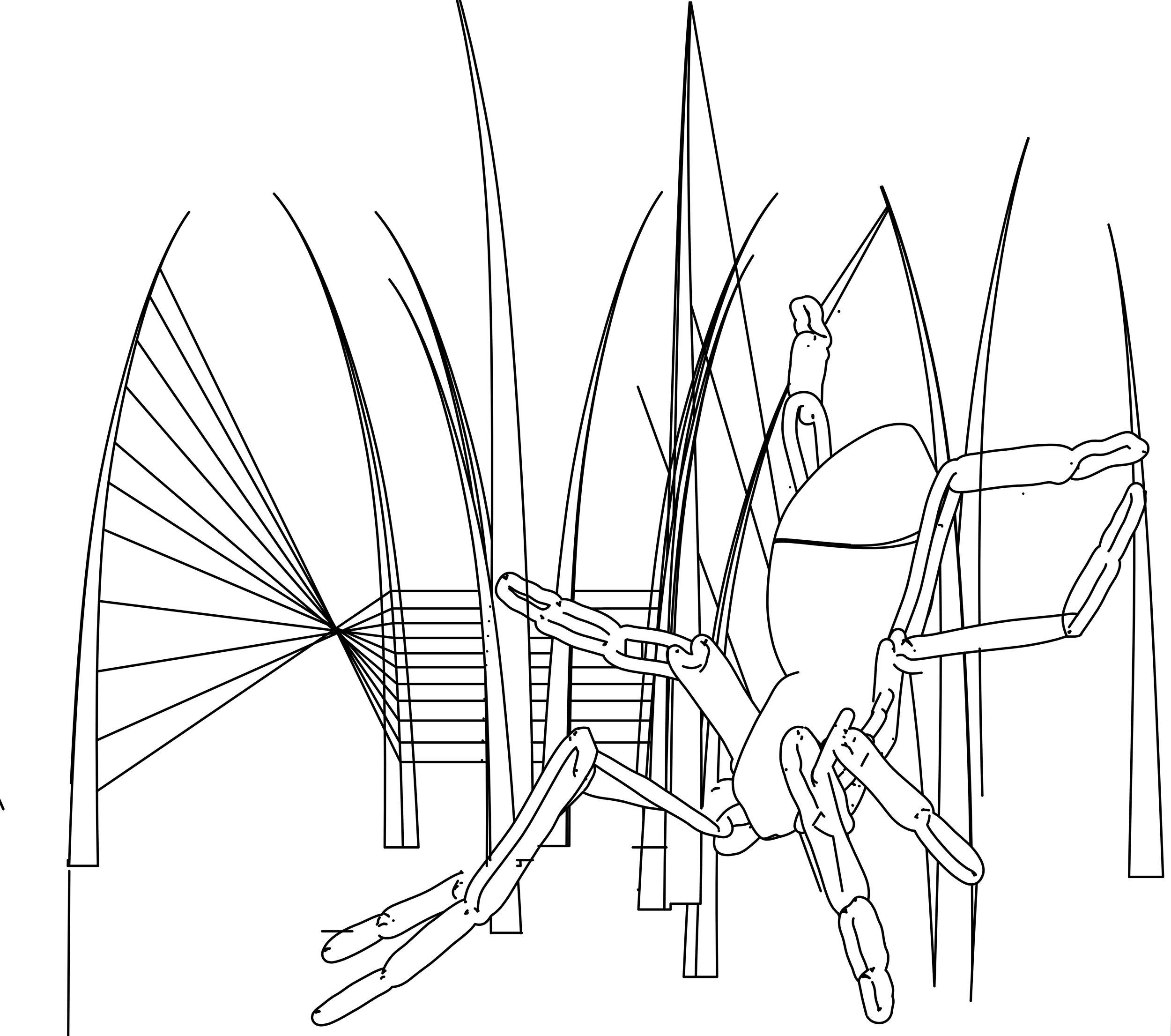 Waterloo interim landscaping plan-Fen raft spider 230419.jpg