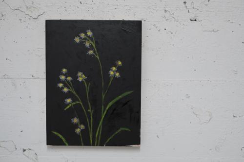 Sarah Osborne, Installation view [photo: Morgane Clémént-Gagnon]