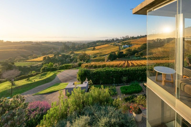 Lunch: Chefs Warehouse - Situated at the top of the Constantia Valley, Chefs Warehouse at Beau Constantia boasts one of the best views in Cape Town. A produce-driven menu that changes regularly, with their signature experience being tapas for 2. View Website.