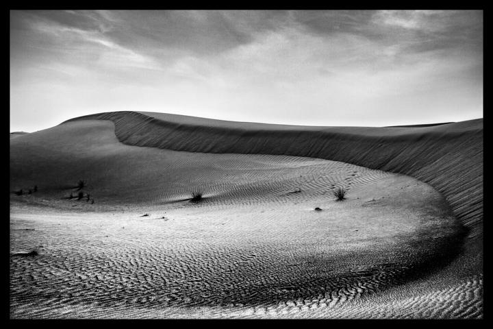 Black and white-51.jpg