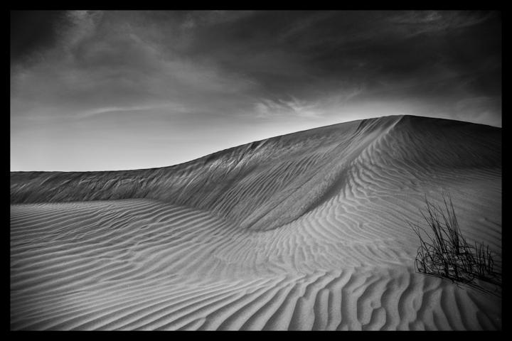 Black and white-53.jpg