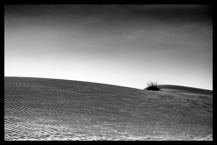 Black and white-54.jpg