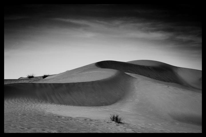 Black and white-56.jpg