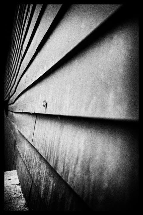 Black and white-46.jpg