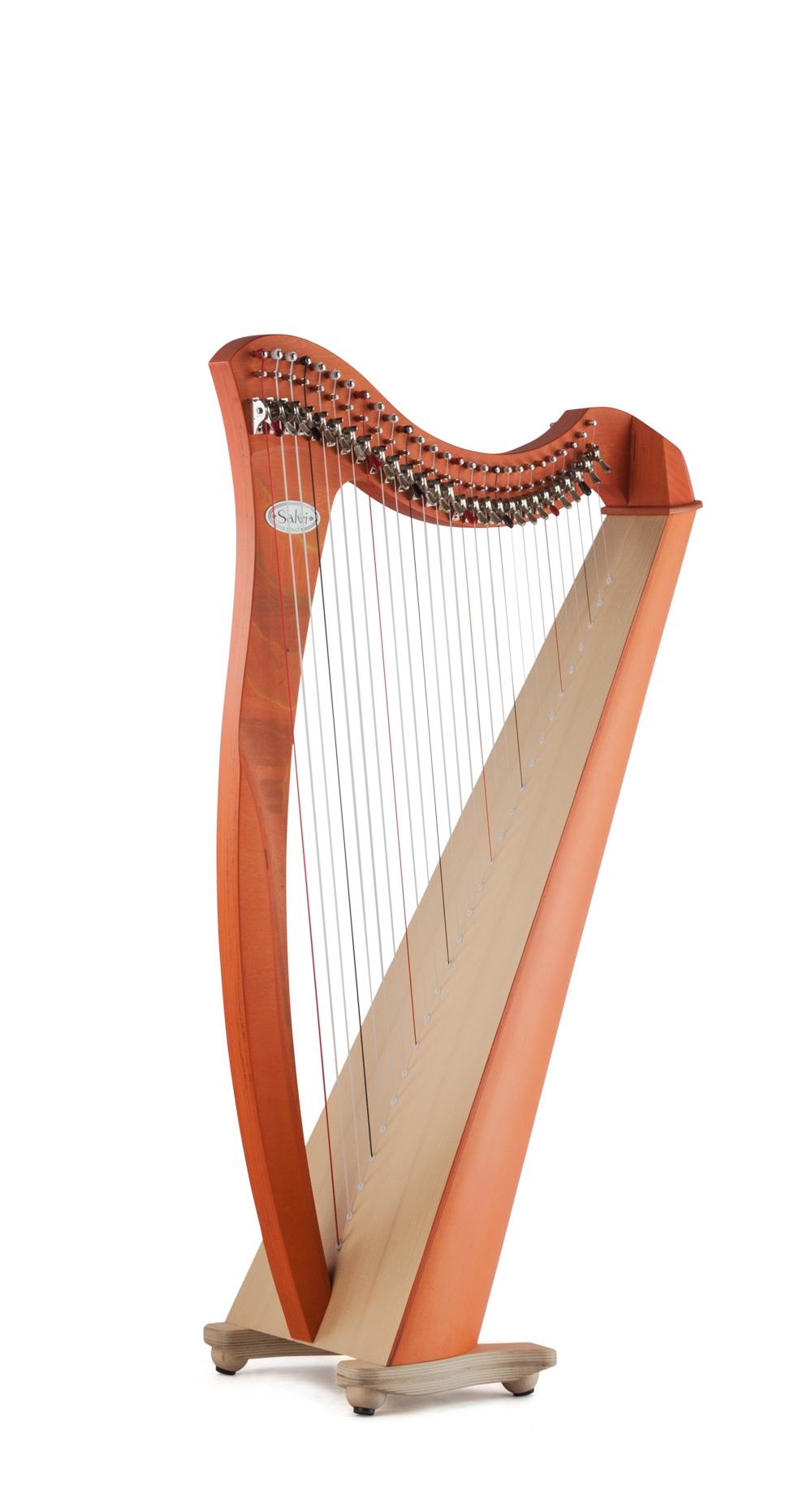 Salvi Lever Harp