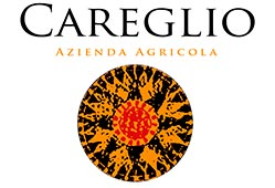 CAREGLIO, BALDISERRO D'ALBA  - PRACTICING ORGANIC