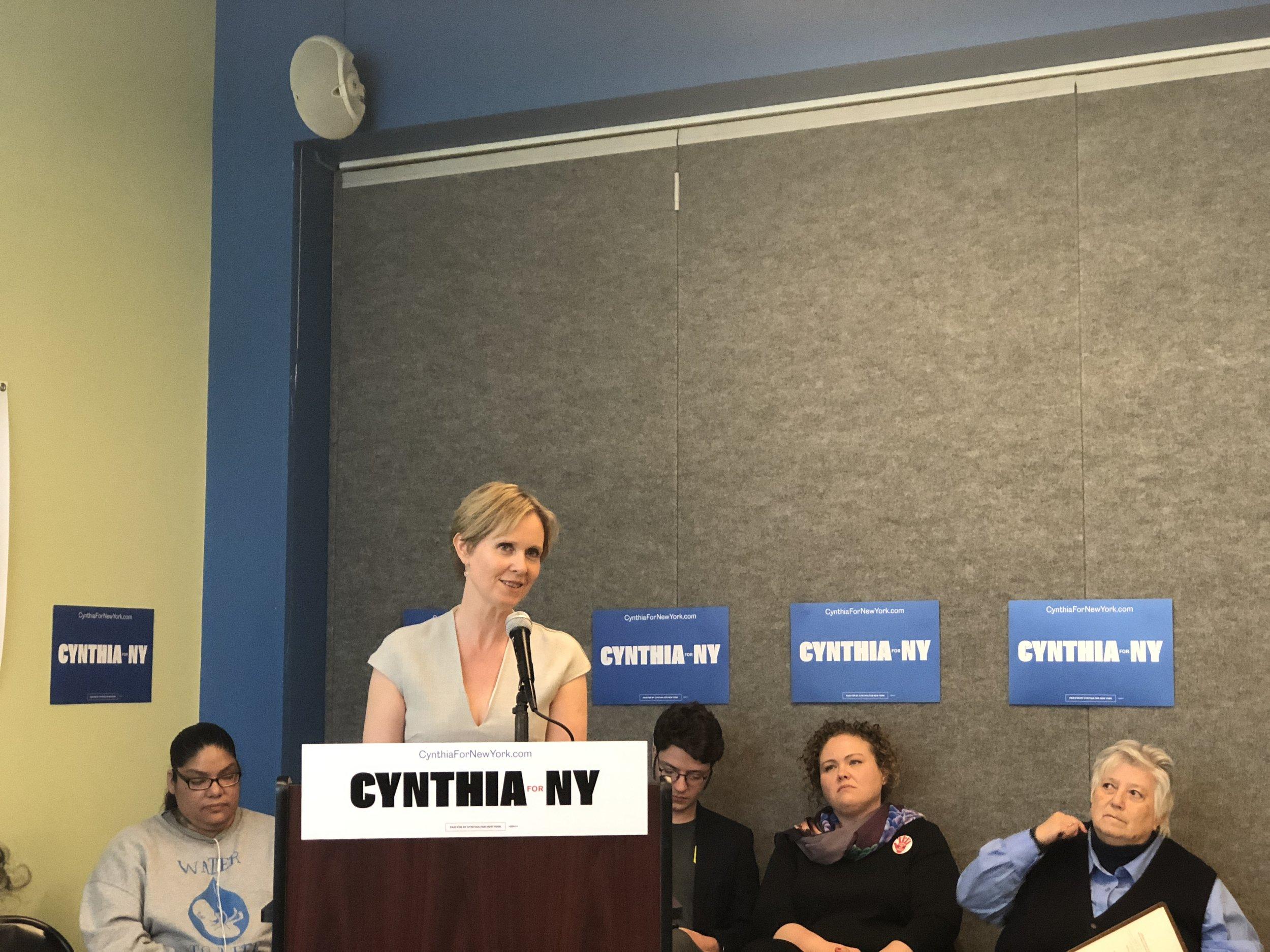 Candidate Cynthia Nixon