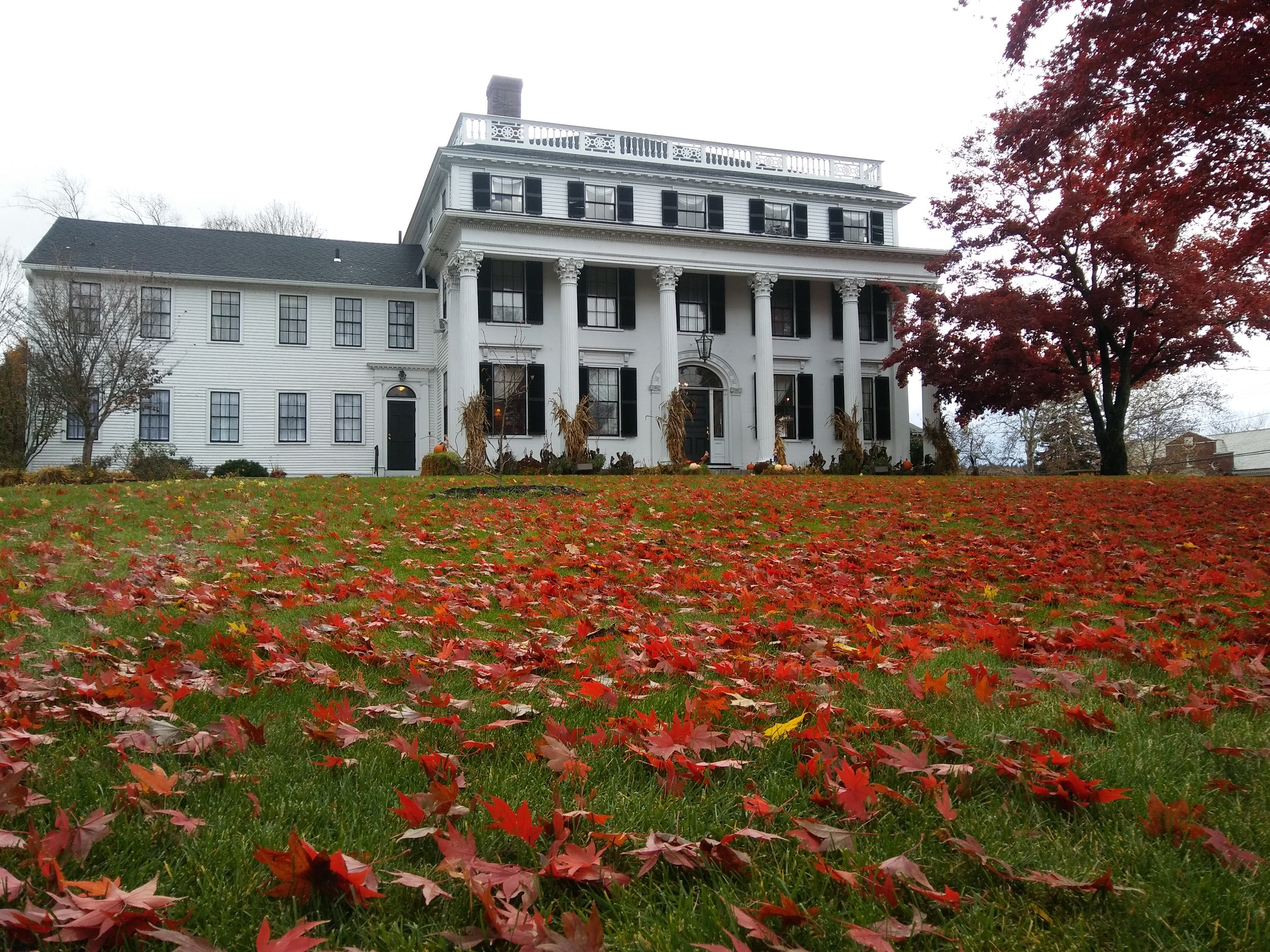 The front lawn festooned with autumn leaves, fall. Photo: Mary Bowen, Asa Waters Mansion.